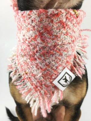 Fairy Pink Tweed Swagdana with Frayed Edges - Neck Close-up of Cute Chihuahua Wearing Swagdana. Dog Bandana. Dog Scarf