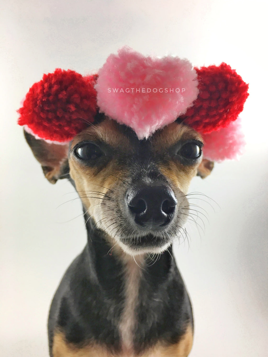 Heart Pomping Crown