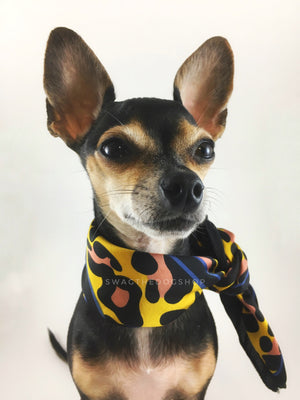 Leopard Sunflower Yellow Swagdana Scarf - Bust of Cute Chihuahua Wearing Swagdana Scarf as Neckerchief. Dog Bandana. Dog Scarf.