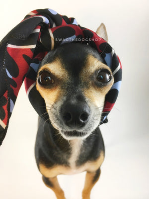 Leopard Burgundy Swagdana Scarf - Bust of Cute Chihuahua Wearing Swagdana Scarf as Headband. Dog Bandana. Dog Scarf.