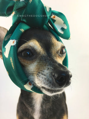 Lorenzo Llama Green Swagdana Scarf - Bust of Cute Chihuahua Wearing Swagdana Scarf as Headband. Dog Bandana. Dog Scarf.