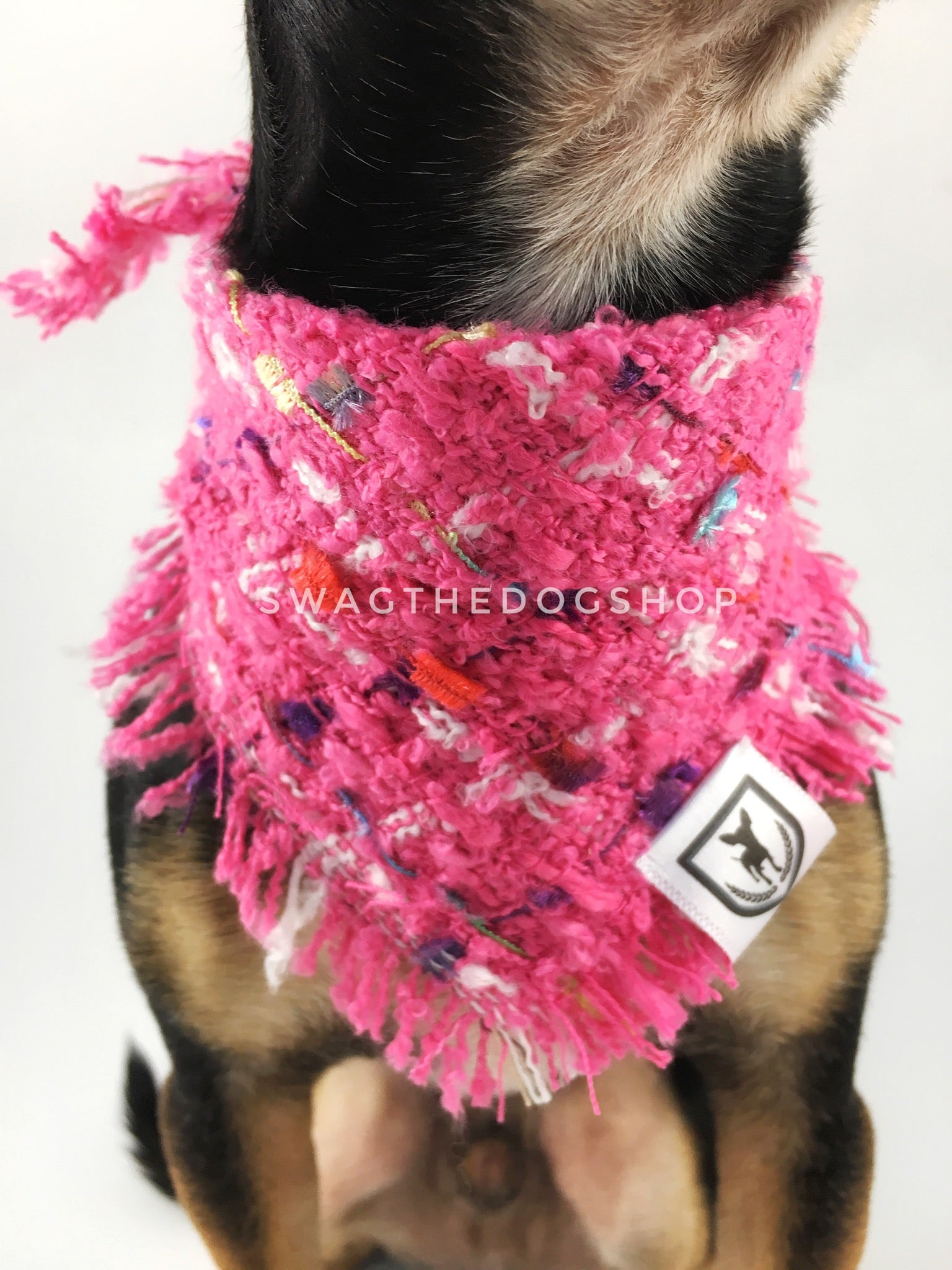Hot Pink Tweed Swagdana with Frayed Edges - Neck Close-up of Cute Chihuahua Wearing Swagdana. Dog Bandana. Dog Scarf