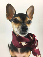 Lorenzo Llama Burgundy Swagdana Scarf - Bust of Cute Chihuahua Wearing Swagdana Scarf as Neckerchief. Dog Bandana. Dog Scarf.