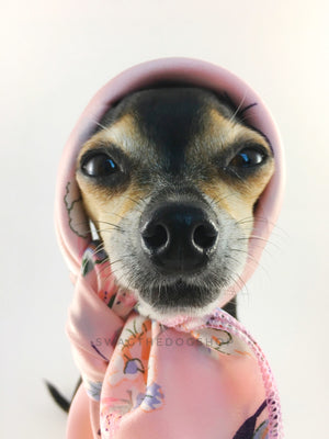 Pink Wild Flower Swagdana Scarf - Bust of Cute Chihuahua Wearing Swagdana Scarf as Headscarf. Dog Bandana. Dog Scarf.