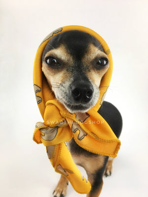 Lorenzo Llama Yellow Swagdana Scarf - Bust of Cute Chihuahua Wearing Swagdana Scarf as Headscarf. Dog Bandana. Dog Scarf.
