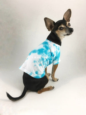 Swagadelic Sky Blue Tie Dye Tee - Cute Chihuahua named Hugo in sitting position with his back towards the camera and looking back, wearing the hand tie-dyed tee with Sky Blue