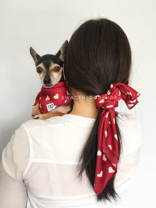 Full of Heart Burgundy Cream Swagdana Scarf - Woman wearing Swagdana Scarf as Hair Tie and Hugo, The Chihuahua Wearing Swagdana Scarf as Bandana. Dog Bandana. Dog Scarf