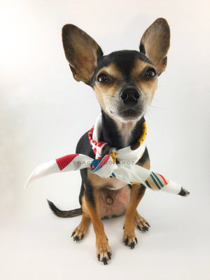 Rock Your Socks Swagdana Scarf - Full Frontal View of Cute Chihuahua Wearing Swagdana Scarf as Neck Scarf. Dog Bandana. Dog Scarf.