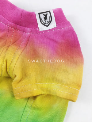 Swagadelic Pride Ombré Tie Dye Tee - Close-up of product front view. The hand tie-dyed tee with Pink, Yellow, Green, Sky Blue and Purple
