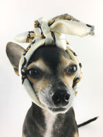 24K Vanilla Gold Swagdana Scarf - Bust of Cute Chihuahua Wearing Swagdana Scarf as Headband. Dog Bandana. Dog Scarf