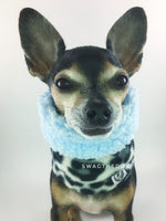 Gray Snow Leopard Swagsnood - Close-up Face View of Hugo, Cute Chihuahua Dog Wearing gray snow leopard print fleece dog snood. Blue sherpa rolled up 1/3 of the snood and 2/3 with gray snow leopard print fleece