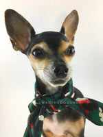 Fierce Forest Green with Red Swagdana Scarf - Bust of Cute Chihuahua Wearing Swagdana Scarf as Neck Scarf. Dog Bandana. Dog Scarf