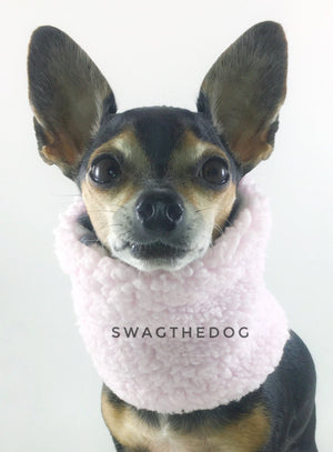 Pink Snow Leopard Swagsnood - Full Front View of Hugo, Cute Chihuahua Dog sitting wearing pink sherpa side