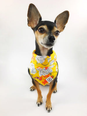 Yellow Wild Flower Swagdana Scarf - Bust of Cute Chihuahua Wearing Swagdana Scarf as Bandana. Dog Bandana. Dog Scarf.