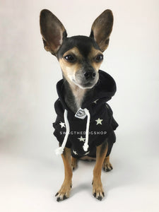 All-Star Black Hoodie - Full Front View of Cute Chihuahua Dog Wearing Hoodie. Black and White Star Hoodie