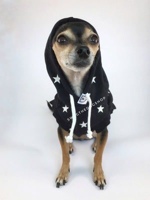 All-Star Black Hoodie - Front View of Cute Chihuahua Dog Wearing Hoodie with Hood Up. Black and White Star Hoodie
