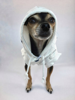 All-Star White Hoodie - Front View of Cute Chihuahua Dog Wearing Hoodie with Hood Up. White and Blue Star Hoodie