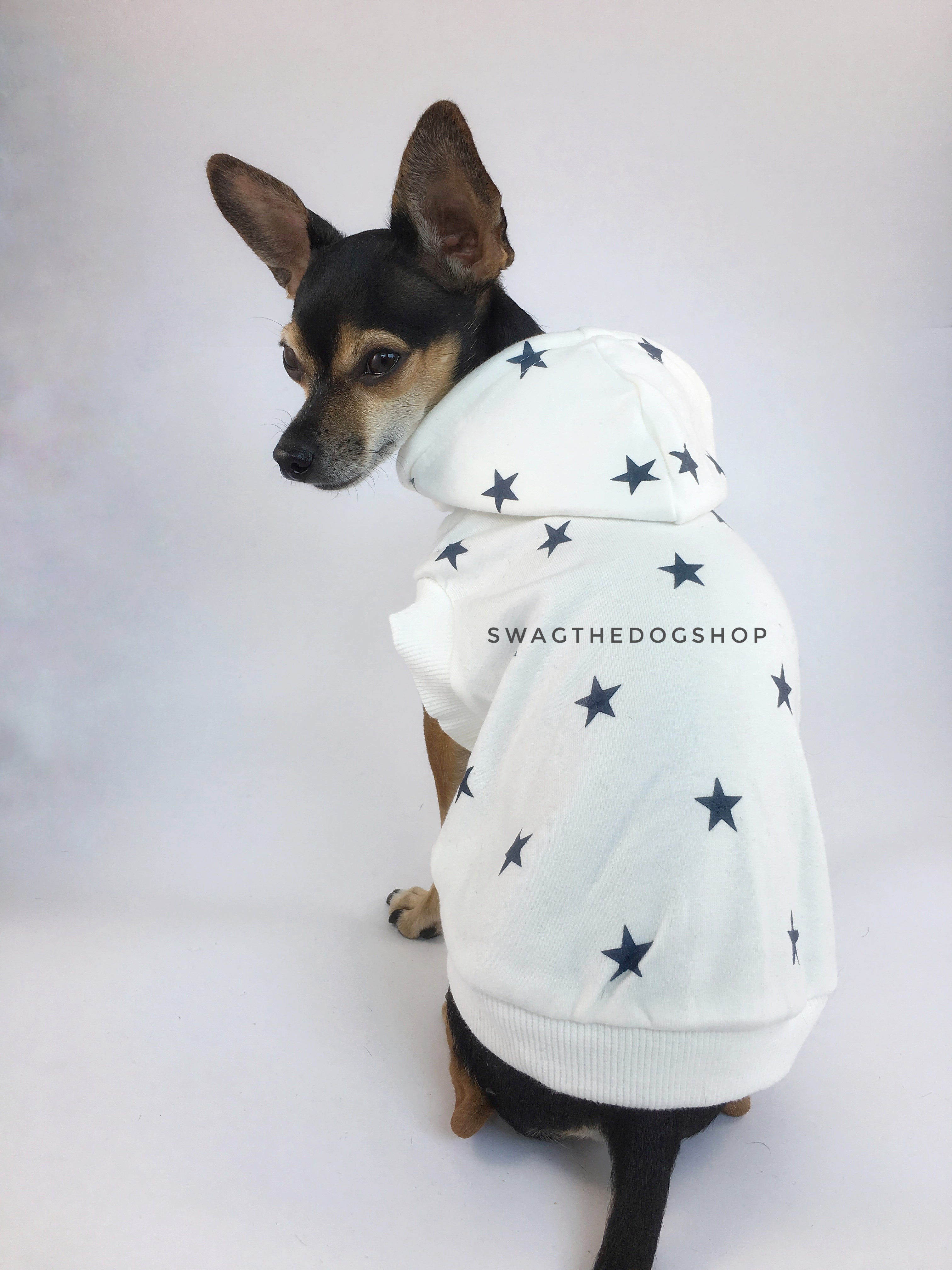 All-Star White Hoodie - Cute Chihuahua Dog Wearing Hoodie Looking Back. White and Blue Star Hoodie