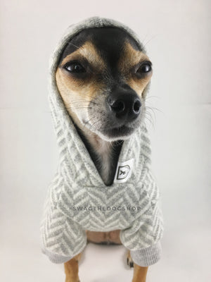 Après Ski Gray Hoodie - Cute Chihuahua Dog Wearing Hoodie with Hood Up. Gray and White Herringbone Hoodie