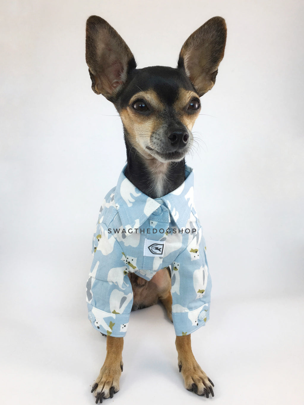 Arctic Expedition Shirt - Cute Chihuahua Dog Wearing Full Front View. Polar Bear Fishing Expedition Blue Button Shirt