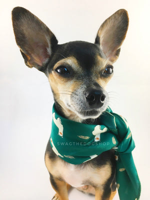 Lorenzo Llama Green Swagdana Scarf - Bust of Cute Chihuahua Wearing Swagdana Scarf as Neckerchief. Dog Bandana. Dog Scarf.
