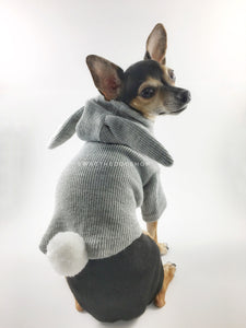Gray Bunny Hoodie - Cute Chihuahua Dog Wearing Hoodie Looking Back. Gray Bunny Hoodie with Pom Pom Tail