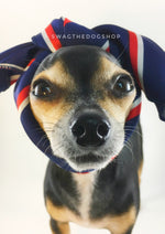 Afternoon in Paris Swagdana Scarf - Bust of Cute Chihuahua Wearing Swagdana Scarf as Headband. Dog Bandana. Dog Scarf