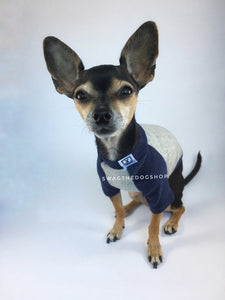 Navy and Gray Centerfield Tees T-Shirt - Cute Chihuahua Dog Wearing T-Shirt Full Front View. Navy and Gray T-Shirt