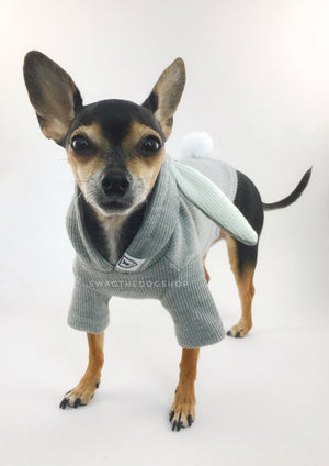 Gray Bunny Hoodie - Side View of Cute Chihuahua Dog Wearing Hoodie. Gray Bunny Hoodie with Pom Pom Tail