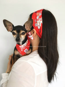 Red Wild Flower Swagdana Scarf - Woman wearing Swagdana Scarf as Headband and Hugo, The Chihuahua Wearing Swagdana Scarf as Bandana. Dog Bandana. Dog Scarf