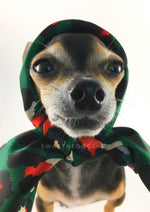 Fierce Forest Green with Red Swagdana Scarf - Bust of Cute Chihuahua Wearing Swagdana Scarf as Headscarf. Dog Bandana. Dog Scarf