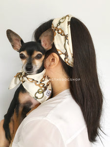 24K Vanilla Gold Swagdana Scarf - Woman wearing Swagdana Scarf as Headband and Hugo, The Chihuahua Wearing Swagdana Scarf as Bandana. Dog Bandana. Dog Scarf