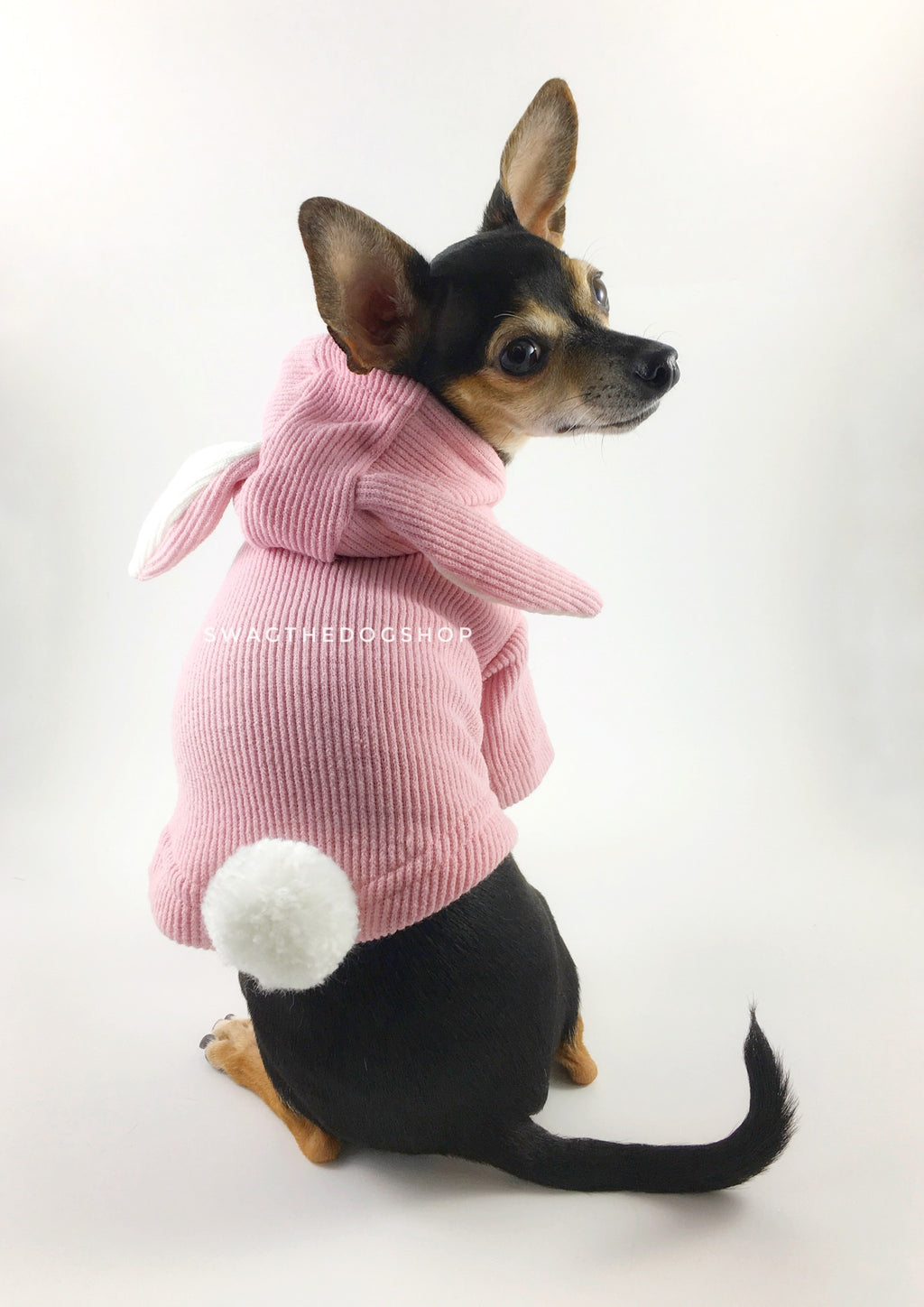 Pink Bunny Hoodie - Cute Chihuahua Dog Wearing Hoodie Looking Back. Pink Bunny Hoodie with Pom Pom Tail