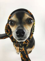 24K Black Gold Swagdana Scarf - Bust of Cute Chihuahua Wearing Swagdana Scarf as Headscarf. Dog Bandana. Dog Scarf