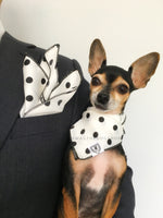 Polka Dot White Swagdana Scarf - Man using Swagdana Scarf as Pocket Square in his Sports Jacket and Hugo, The Chihuahua Wearing Swagdana Scarf as Bandana. Dog Bandana. Dog Scarf