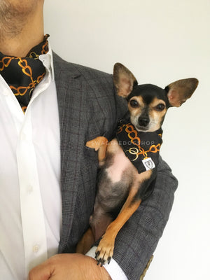 24K Black Gold Swagdana Scarf - Man using Swagdana Scarf as Cravat and Hugo, The Chihuahua Wearing Swagdana Scarf as Bandana. Dog Bandana. Dog Scarf