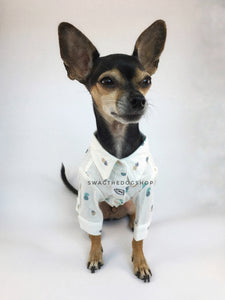Pineapple Express Shirt - Full Front View of Cute Chihuahua Dog Wearing Shirt. Pineapple Print Shirt