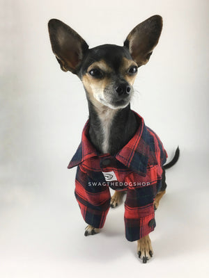 True North Red Plaid Shirt - Full Front View of Cute Chihuahua Dog Wearing Shirt. Red Plaid Shirt