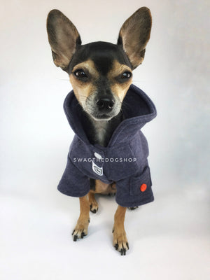 Yachtsman Navy Shirt - Full Front View of Cute Chihuahua Dog Wearing Shirt with Collar Up. Navy Shirt with Fleece Inside