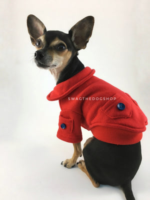 Yachtsman Red Shirt - Side and Back View of Cute Chihuahua Dog Wearing Shirt. Red Shirt with Fleece Inside