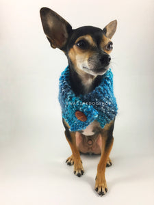 Blue Lagoon Swagsnood - Full Front View of Cute Chihuahua Dog Wearing Spectrum of Blue Color Dog Snood with Accent Button