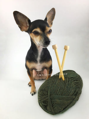 Army Green Swagsnood - Yarn View with Cute Chihuahua Dog. Army Green Color Dog Snood with Accent Button