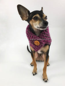 Berries Swagsnood - Full Front View of Cute Chihuahua Dog Wearing Berries Pink Color Dog Snood of Accent Button