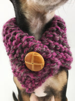 Berries Swagsnood - Close Up Neck View of Cute Chihuahua Dog Wearing Pink Gray Mixed Color Dog Snood with Accent Button