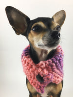 Cotton Candy Swagsnood - Close Up View of Cute Chihuahua Dog Wearing Mixed Color of Pink, Purple and Salmon Pink Dog Snood with Accent Button