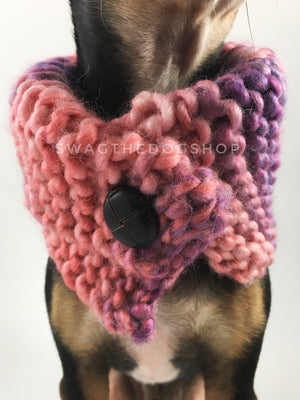 Cotton Candy Swagsnood - Close Up Neck View of Cute Chihuahua Dog Wearing Mixed Color of Pink, Purple and Salmon Pink Dog Snood with Accent Button