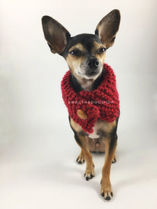 Maroon 7 Swagsnood - Full Front View of Cute Chihuahua Dog Wearing Maroon Color Dog Snood with Accent Button