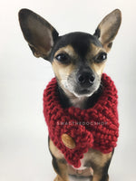 Maroon 7 Swagsnood - Close Up View of Cute Chihuahua Dog Wearing Maroon Color Dog Snood with Accent Button