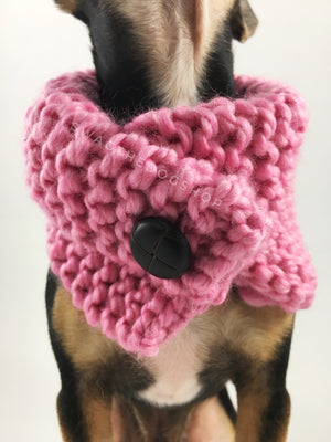 Pink Enough Swagsnood - Close Up Neck View of Cute Chihuahua Dog Wearing Pink Color Dog Snood with Accent Button