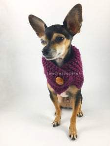 Plum Swagsnood - Full Front View of Cute Chihuahua Dog Wearing Plum Color Dog Snood with Accent Button